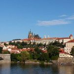 世界のいちごを知ろう!チェコのいちご事情とは?