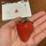 北海道産イチゴの美味しさをギュッと凝縮!新千歳空港で購入できる絶品イチゴスイーツ